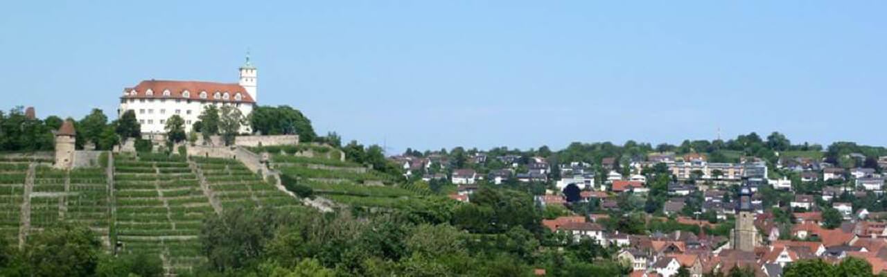 Vaihingen Schloss und Stadt